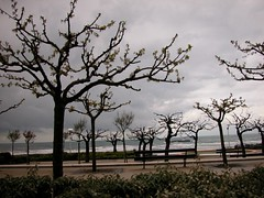 Rambla de Biarritz