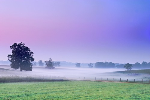 blue green nature sunrise landscape md purple maryland 10d portfolio mappr dairyfarm odenton sitesetcolor exploretop20