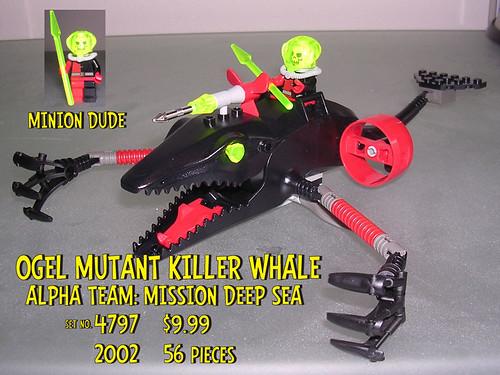 02.4797 killer whale