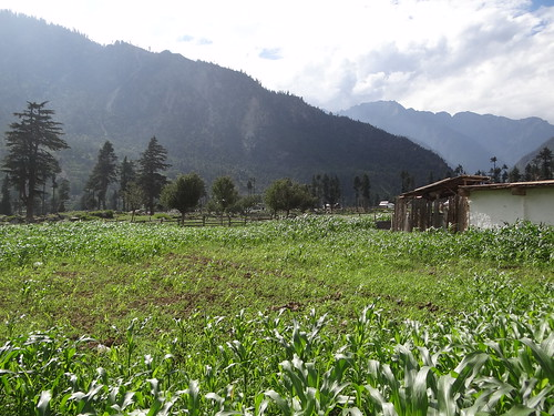 pakistan mountain field corn hut greenvalley kalam swat artphotography