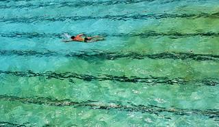Swimming in Bondi, NSW | by Thiru Murugan