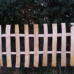 Feather edge fence design