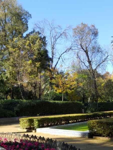 Parque Maria Luisa Sevilla 3