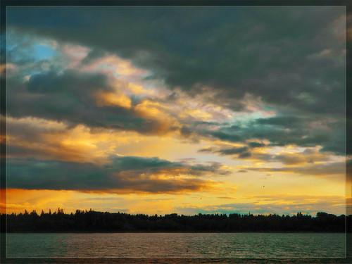 trees sunset summer sky lake nature water beauty clouds reflections nikon horizon explore davidsmith explored calgaryalbertacanada magicalskies