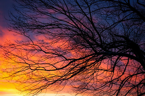 morning sky color sunrise dawn december skies vibrant brilliant naturesgreenpeace