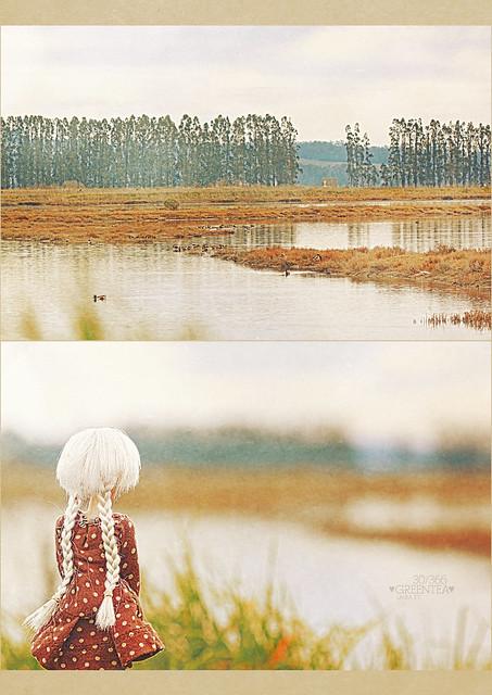 30/366 : landscape