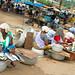 Kerala – rybí trh, foto: Daniel Linnert