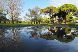 [Explore] Puddles Reflection at the Golf Old Course Cannes - Mandelieu #1