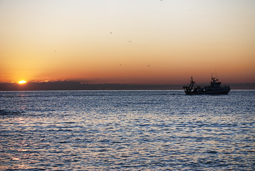 Early at dawn...  / Temprano al amanecer... | by Jesus Solana Poegraphy