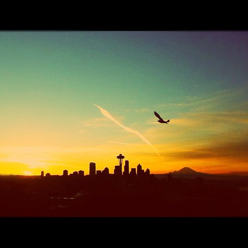 seattle park city morning sunset red sky orange sun mountain color bird art beauty smile skyline clouds sunrise square happy anne flying washington timelapse mt ipod time space seagull kerry queen needle squareformat wa kerrypark normal rainer emeraldcity lapse iphone ipodtouch iphoneography instagramapp uploaded:by=instagram