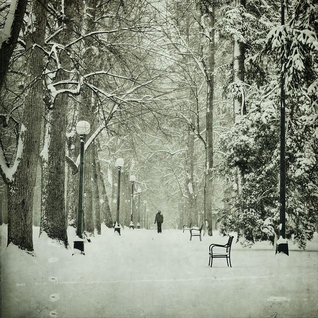 cold walker