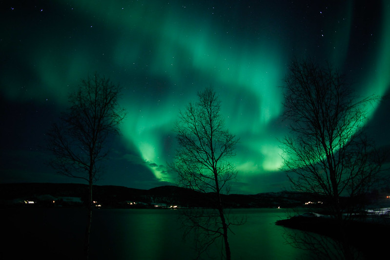 AuroraBorealisAursfjord-6