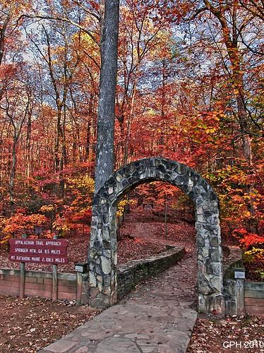 statepark ga georgia hiking trail staircase views vista photostream amicalolafalls appalachiantrail 308 chattahoocheenationalforest approachtrail sonydslra700 topoffalls zeiss16803545 houckster
