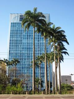 Palm trees and office block by the Viaduto do Chá, São Paulo 2