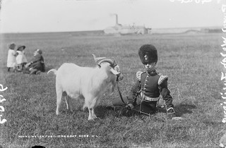 One Man and his, er, Goat | by National Library of Ireland on The Commons