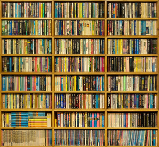 paperback bookshelf | by ronbrinkmann