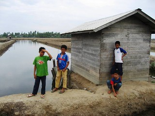 Boys at the shrimp ponds   by East Asia & Pacific on the rise - Blog