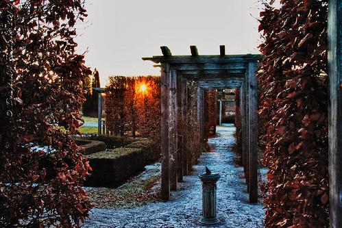 winter sun ontario sunrise guelph arboretum southernontario dje canonef24105f4lis canoneos1dmkiin djengland djenglandphotography