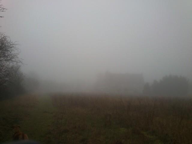 dsc_0331 - Fog, getting worse