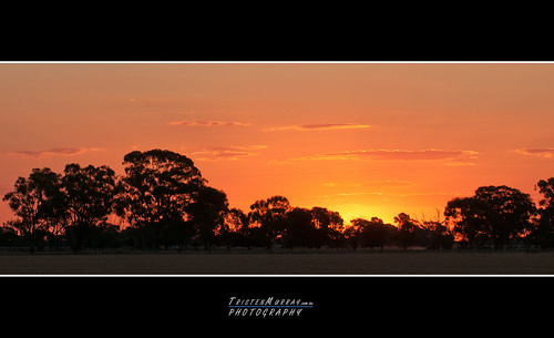 new sunset nikon day farm first years murray f28 2012 paddock tristen 70200mm d300s