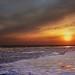 ~~~~~  frozen sea  ~~~~