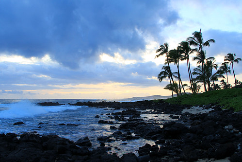 hawaii hawaiianislands kauai kauaihawaii poipu ocean pacificocean trees palmtrees sunset hawaiiansunset bluesunset blue lavarocks waves oceanwaves surf oceansurf clouds landscape seascape sunsets landscapes crookedtreeartscenter petoskeycameraclub petoskeyphotographyclub crookedtreephotographicsociety robertcarterphotographycom ©robertcarter ngc