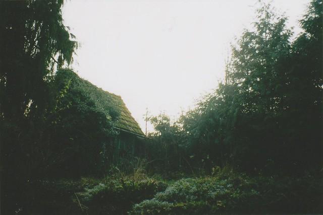 Sleepy Garden