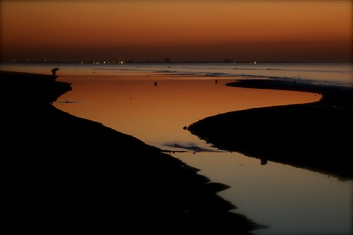 ocean beach sunrise raw shelling lowtide sanibelisland sheller sanibelstoop canon40d kadacat