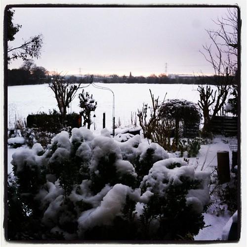 Snow, Staffordshire DE13 | by lucabelletti
