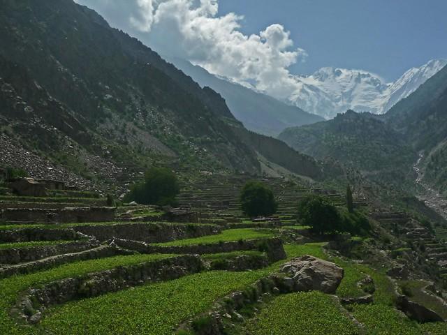 Village Ser, Diamir Valley, Pakistan, at the background Nanga Parbat 8.126 m
