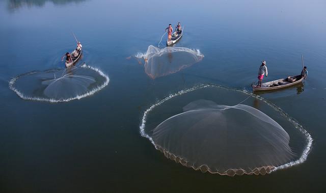 Three Giant Jellyfish--Amarapura , Myanmar