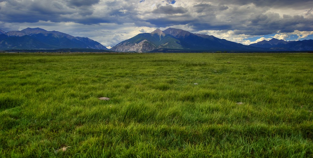 Grassy plains.