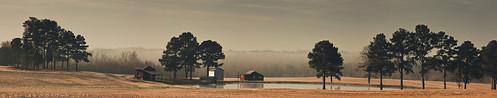 morning trees fog barn sunrise canon pond farm northcarolina fields bunn franklincounty 450d imaginefotocom