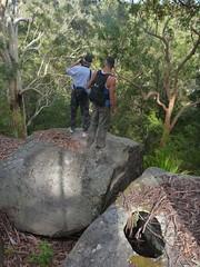 Hole in Rock - Forest Island Bushwalk - Royal National Park Sydney