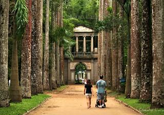 Jardim Botânico do Rio de Janeiro  #CLAUDIOperambulando