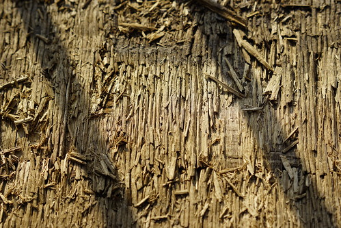 Plywood erosion | by luxaeternum