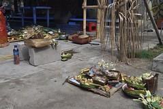 Ofrenes d'aquesta mena pet tot arreu a Bali