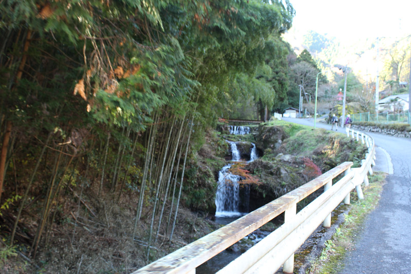 伊豆ヶ岳登山道