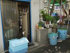 火, 2011-09-27 21:18 - 浅草