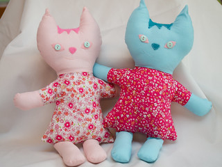 Pink and Blue Kitty