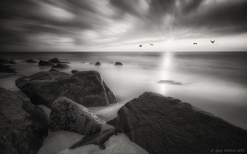 ocean bw sun motion beach nature birds composite zeiss sunrise rocks sony serene tranquil sandyhook sel1635z