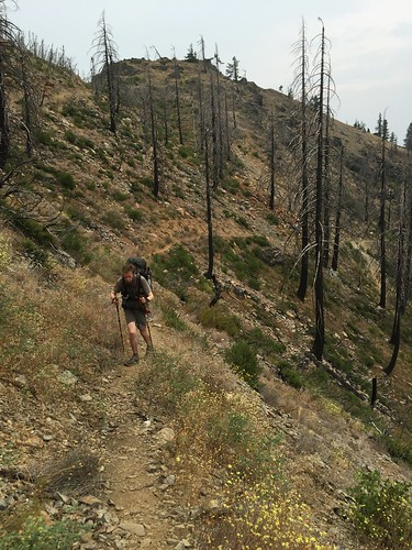 PCT: Day 117