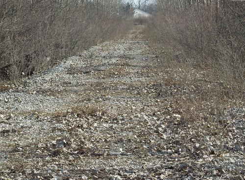 Narrow Cramped Tight Road