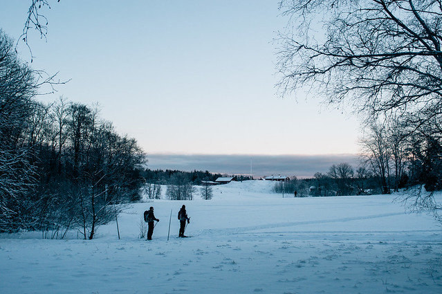 Skiers, view