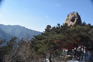 LaoShan00011 | by T.Cateland