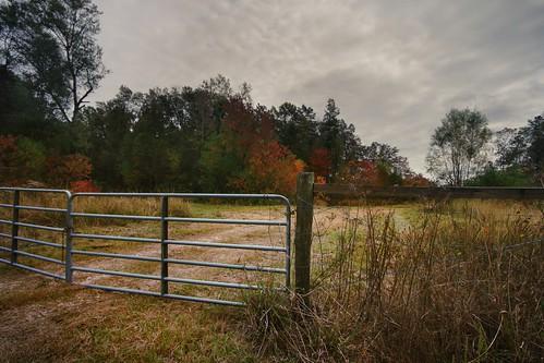 autumn trees fall nature rural fence landscape louisiana gate seasons overcast roadside 10mm canonefs1022mmf3545usm mrgreenjeans gaylon peairsrd gaylonkeeling