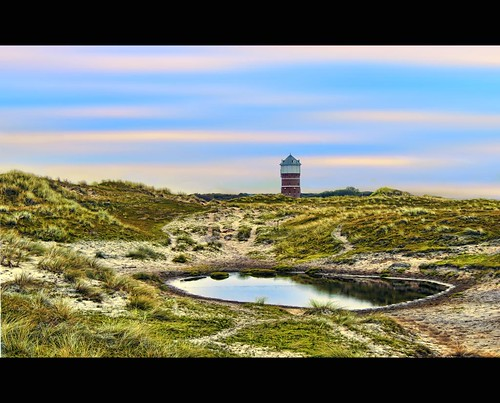 holland green tower water netherlands dutch grass monster canon photography coast photo pond sand cattle dune watertower stock nederland powershot hague coastal area protection stockphoto s90 stockphotography s100 wpk s95