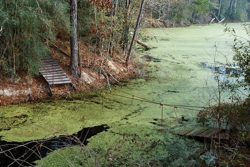 bridge abandoned water landscape pond woods louisiana decay 28mm suspensionbridge hiddencreek mrgreenjeans gaylon canonef28135mmf3556isusm gaylonkeeling libertyroadswamp