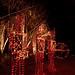 Holiday Lighting Exterior