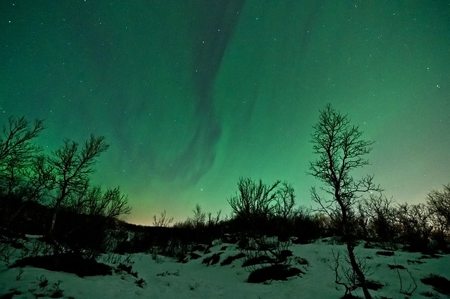 Sky is covered in the green light of Aurora